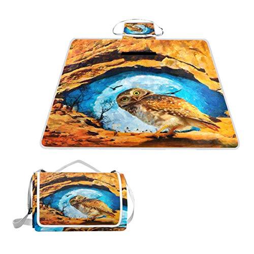 DragonSwordlinsu Coosun Picknickdecke mit Eulen-Motiv, handliche Matte, schimmelresistent und wasserdicht, für Picknicks, Strand, Wandern, Reisen, Reisen und Ausflüge