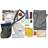 Lifeline 4390AAA AAA Severe Weather Road Safety Kit-66 Pieces-Featuring Emergency Folding Shovel, Fleece Set,...