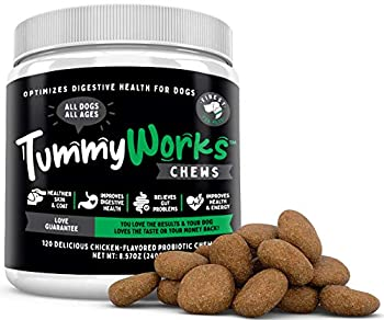 TummyWorks Probiotic Chews for Dogs Relieves Diarrhea Upset Stomach Gas Constipation & Bad Breath Itching Allergies & Yeast Infections With Digestive Enzymes & Prebiotics Made in USA 120 count
