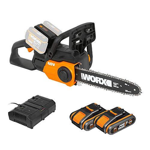 WORX 40V Akku Kettensäge WG381E, 2 x 2,0Ah, Powershare, Werkzeugloses Kettenspannsystem, Schnellstopp-kettenbremse, Dual- ladegerät, 30cm Stablänge