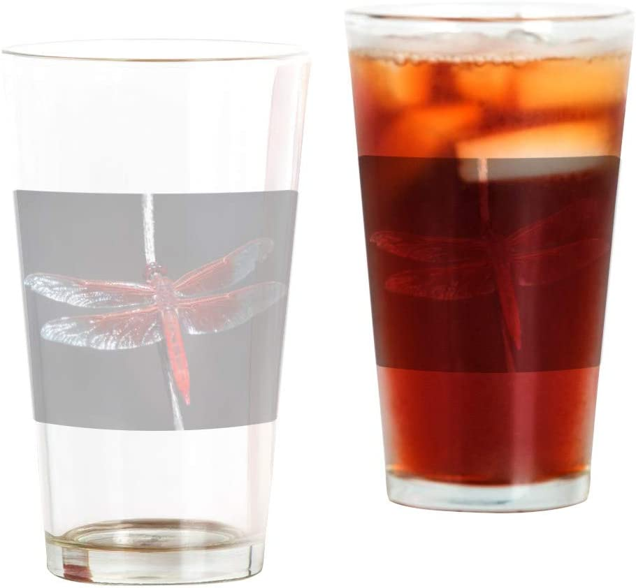 Arlington Mall Pint Drinking Long Beach Mall Glass Flame Dragonfly Red