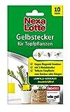 Nexa Lotte Gelbstecker, Gelbsticker, Fliegenfalle,...