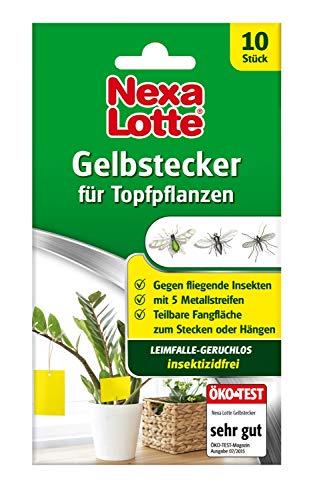 Nexa Lotte Gelbstecker, Gelbsticker, insektizidfreie, beidseitig beleimte Leimfallen zum Schutz von Zierpflanzen, 10St.