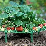 AMONIDA Evite la pudrición del Suelo Promueva el Crecimiento Soporte de Fresa, Estante para trepar Plantas, Material plástico para Plantar Balcones Plantación de invernaderos