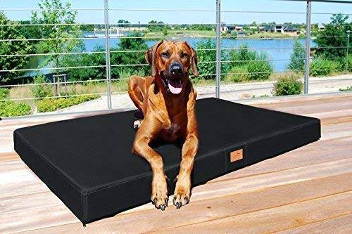 tierlando Mobile Hundematratze Hugo Basic | Gehobene Stabilität & Qualität! | Anti-Haar Polyester | | XXL 150 x 100 x 13 cm | Schwarz