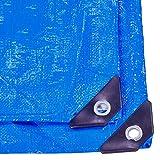 PAMEX - Toldo reforzado 90 gramos (3x4m, Azul)