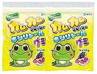カムカムフレッシュ キシリトール グミ グレープ味 1袋(12粒入) × 2袋