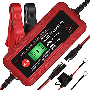 Best battery chargers for motorcycles Reviews