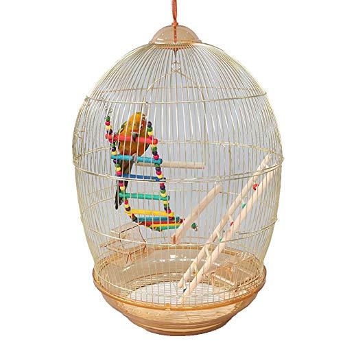 Meetshine Grande Gabbia per Pappagalli Gabbia per Uccelli Vintage Ideale per Canarini Zebra Fringillidi E Piccoli Uccelli,d'oro,Standard