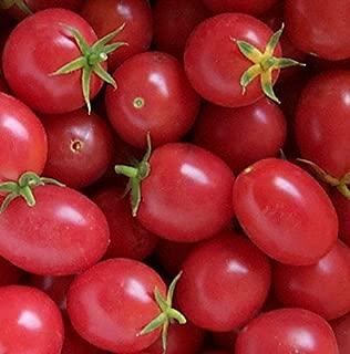 Delicious Porter Tomato (Non-Gmo) Tomato 150 Seeds By Jays Seeds Upc 643451296105