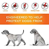 Zoom IMG-1 prozada collare antipulci cane impermeabile