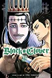 Black Clover, Vol. 25: Humans And Evil (English Edition)