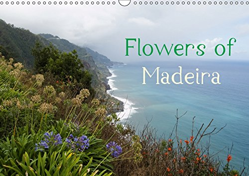 Flowers of Madeira - UK Version (Wall Calendar 2018 DIN A3 Landscape): Wonderful flowers in Madeira's autumn (Monthly calendar, 14 pages ) (Calvendo Places)