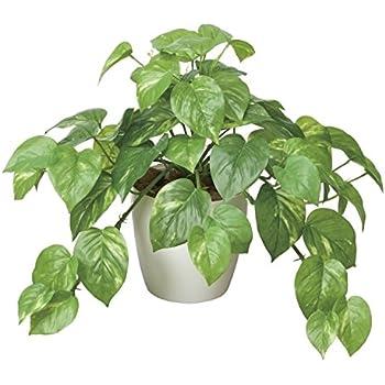 光触媒 人工観葉植物 光の楽園 フレッシュポトス 384A50