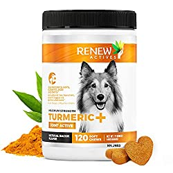Renew Actives Natural Advanced Chewable Organic Turmeric for Dogs