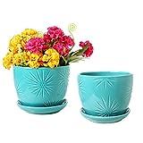 Aqua Sunburst Design Ceramic Flower Planter Pots, Decorative Plant...