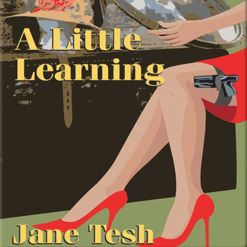 A Little Learning audiobook cover art