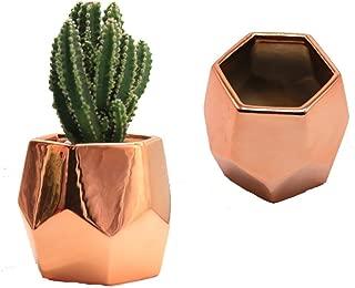Purzest Cacti Pots,Ceramic Succulent Planter Modern Home Decor Cactus Plant Pot, 3 inch Copper Color 2 Set