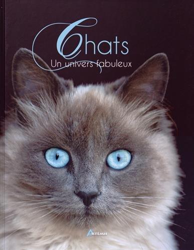 Chats : un Univers Fabuleux