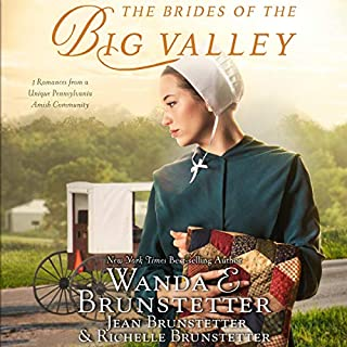 The Brides of the Big Valley audiobook cover art
