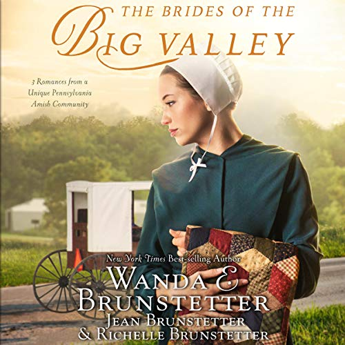 The Brides of the Big Valley cover art