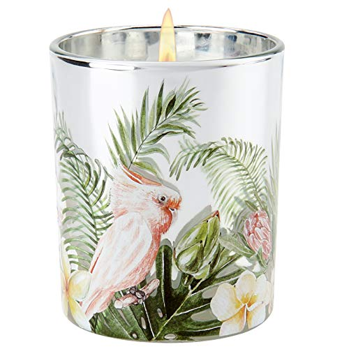 Large Jar Gardenia Scented Candles 2 Wick Gardenia Aromatherapy Candles Gift for Women 6 Oz Long Lasting Bath and Body Works Candles for Home Decoration Meditation Spa Yoga Bath Office