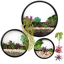 3 Pack Set Modern Wall Planters Succulent Planter Circle Metal Flower Pot Indoor Air Plant Vertical Container Hanging Vase Home Decoration Size S,M,L Black, with 3 Artificial Succulent Plants 8 MATERIAL: Stabilized iron alloy metal with powder coating ensures long lasting color and withstands extreme weather conditions. Tempered and limpid glass feasts your eyes, add visual intrigue to this wall hanging. Do not rust and no unpleasant smell. PLANTS: Great for succulent plants, air plant, mini cactus, faux plants, artificial plant. It also works for mint, herbs, basil, ivy, flowers, climbing plants, evergreens. The possibilities are only limited by your imagination; display them in a wall hook plant holder, a wall mount, a geometric glass vase, or even in a live wreath. They can even make the perfect desk centerpiece for your office. IDEAL: ZEETOON Wall Vase Perfect for displaying your favorite hanging plants, this wall holder is a basic piece that will fit perfectly anywhere. Outdoor or indoor, kitchen, bedroom, great garden shed decor, farmhouse style wall decor, front entry way, or mounting on bathroom.