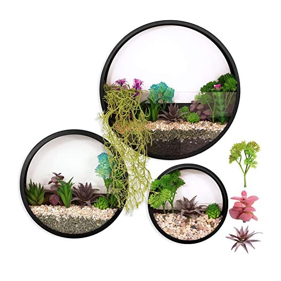ZEETOON 3 Pack Set Modern Wall Planters Succulent Planter Circle Metal Flower Pot Indoor Air Plant Vertical Container Hanging Vase Home Decoration Size S,M,L Black, with 3 Artificial Succulent Plants 1 MATERIAL: Stabilized iron alloy metal with powder coating ensures long lasting color and withstands extreme weather conditions. Tempered and limpid glass feasts your eyes, add visual intrigue to this wall hanging. Do not rust and no unpleasant smell. PLANTS: Great for succulent plants, air plant, mini cactus, faux plants, artificial plant. It also works for mint, herbs, basil, ivy, flowers, climbing plants, evergreens. The possibilities are only limited by your imagination; display them in a wall hook plant holder, a wall mount, a geometric glass vase, or even in a live wreath. They can even make the perfect desk centerpiece for your office. IDEAL: ZEETOON Wall Vase Perfect for displaying your favorite hanging plants, this wall holder is a basic piece that will fit perfectly anywhere. Outdoor or indoor, kitchen, bedroom, great garden shed decor, farmhouse style wall decor, front entry way, or mounting on bathroom.