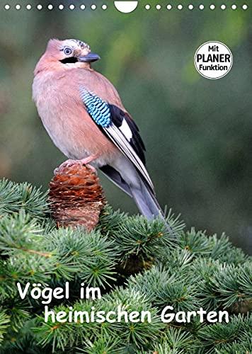 Vögel im heimischen Garten (Wandkalender 2022 DIN A4 hoch)