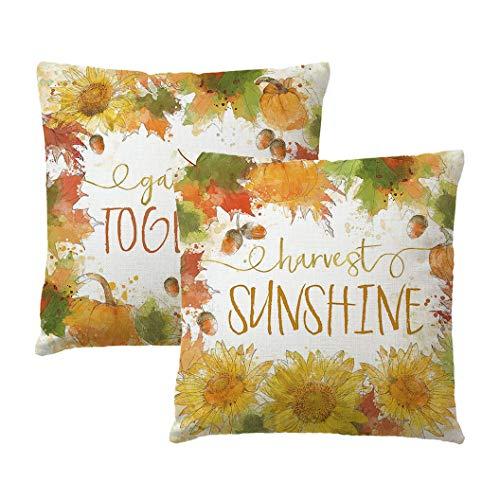 2Pack Autumn Decorative Throw Pillow Covers harvest sunshine/Gather Together Sunflowers/Pumpkins Wreath Cushion Cover Farmhouse Pillowcases 18