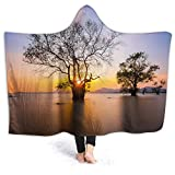 Ultra-Soft Micro Fleece Soft and Warm Throw Hooded Blanket,Coastal,Dawn Time Rising Sun at Seascape with Autumn Trees in Water Habitat Theme,80' 60',Blue Yellow