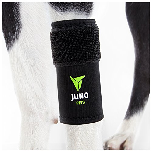 JunoPets Dog Canine Leg Knee Brace, Hock Joint Wrap for Heals and Prevents Injuries and Sprains,...