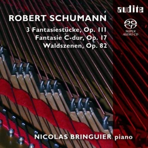 Nicolas Bringuier