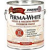 Best Mildew Resistant Paints - RUST-OLEUM 3131 Mildew-Proof Exterior Paint Review