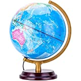 YZT New Led Light Globe Three-Dimensional Relief Metal Bracket Diameter 25cm Chinese and English Version Teaching Learning Globe
