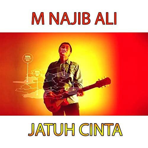 M Najib Ali
