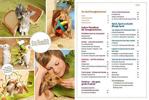 Spiel- und Wohnideen für Zwergkaninchen (GU Tier aktiv) - 3