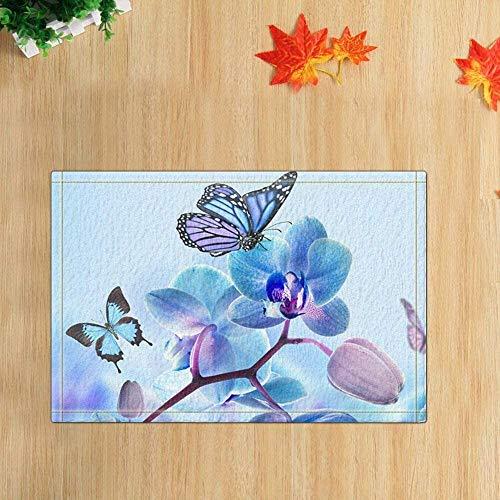 ZHANGSHUQI Blue Butterfly on The Flowers Bath Rugs Non-Slip Rectangle Floor Entryways Outdoor Indoor Front Door Mat Inches Bath Mat