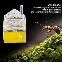 アリの別荘、マニアの家、教育用ペットのマニアの家、アリの家、子供向けの科学玩具