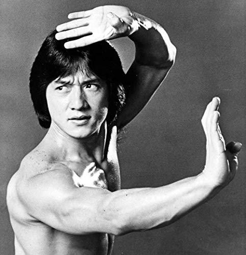 YHNM Puzzle de 1000 Piezas para Obra de Arte de Juego de Rompecabezas para Adultos/Kung Fu Jackie Chan/para Regalos de niños y Adultos(75x50cm)