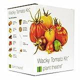 Plant Theatre Kit de tomate loco con 6 variedades extrañas y maravillosas para cultivar