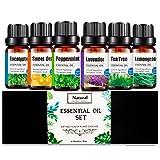 Set 6 pcs Aceites Esenciales para Humidificador Aromaterapia puros Naturales, Set de Regalo 6 x 10ml, Orgánico para Difusor (Eucalipto, Lavanda, Menta, Árbol de té, Hierba de limón, Naranja)
