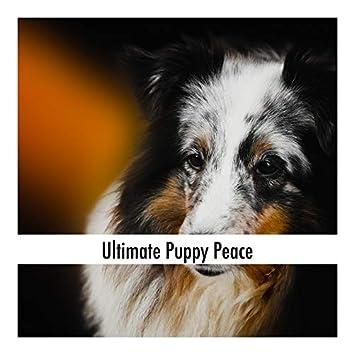 Ultimate Puppy Peace