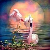 5D Diy Diamond Painting Set Punto de cruz Sunset Water Flamingo Resin Drill Mosaico completo Diamond Embroidery-50 * 50Cm_ (Square_Diamond)