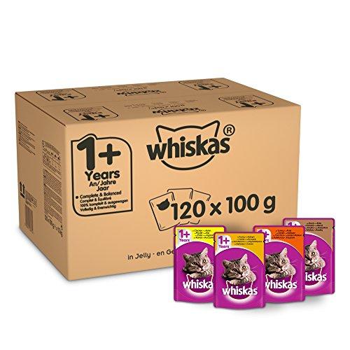 Whiskas - Bolsas de comida húmeda, deliciosa y sabrosa selección de aves en gelatina, adecuada para gatos de 1 a 1 años, mega paquete de 120 x 100 g