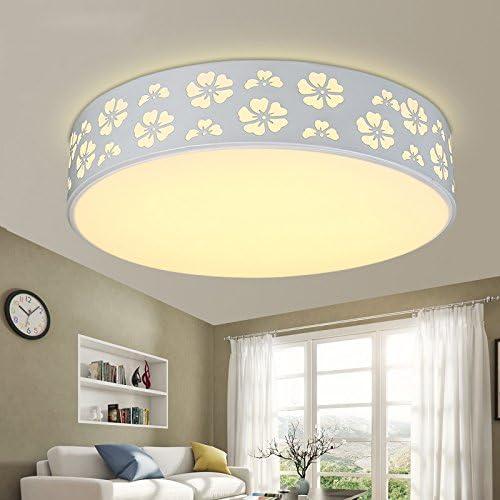 Lampe de plafond LED, lampe de salon moderne, la simplicité, l'originalité, rohommetique, comhommede à distance, étude ronde, salle à hommeger, chambre à coucher, les lampes et les lanternes,30cm- triCouleur