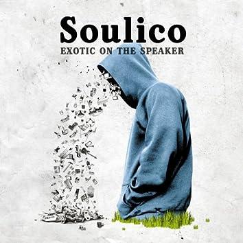 Exotic On The Speaker (Instrumental)