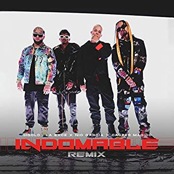 Indomable (Remix)