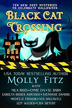 Black Cat Crossing: A Collection of 10 Cozy Mysteries to Celebrate Halloween by [Molly Fitz, Mila Riggs, Emmie Lyn, S.E. Babin, Carolyn Ridder Aspenson, Stephanie  Damore, Michelle Francik, Nyx Halliwell, Izzy Wilder, Lisa Siefert]