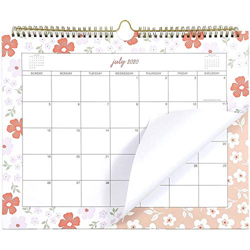 2020-2021 Academic Wall Calendar, 18-Month, Watercolor Pastel Design (15 x 12.1 in)